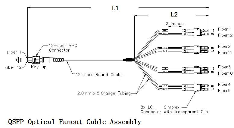 12 Cores MPO FC/APC Harness & Fan-out Cable Assemblies