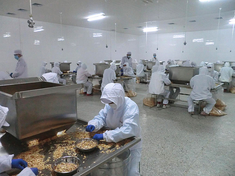 Wholesale Dry Garlic Flakes From Factory