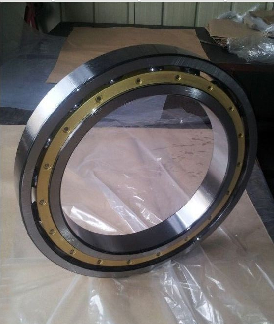 Extra-Large Thin Wall Section Ball Bearing 618/500m