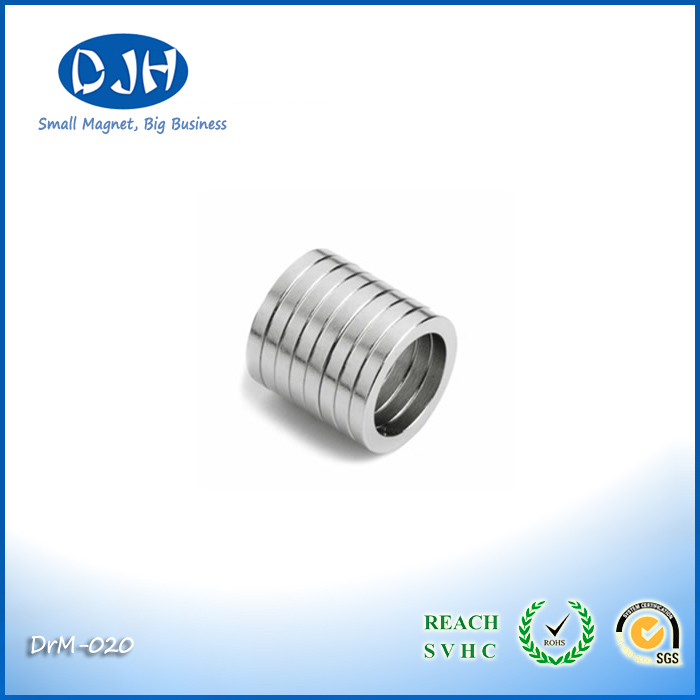 Buy Strong Rare Earth Neodinium Ring Magnets for Sensors