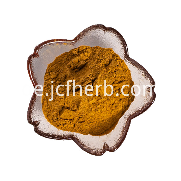 Maca Root Extract Powder