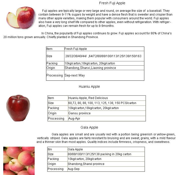 Fresh Fruit FUJI Apple