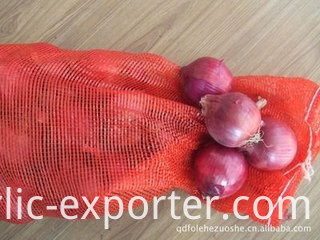 Exporters fresh market prices red onion for importers
