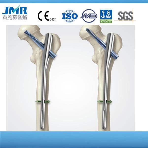 Intramedullary Nails Pfna Gamma Intramedullary Nails