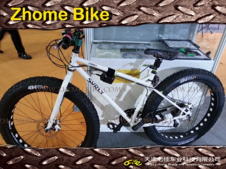 Bicycle Parts/Steel Fat Tire Bike Snow Bike Frame and Fork