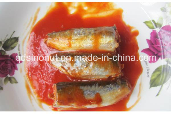 Canned Mackerel in Tomato Sauce or Oil