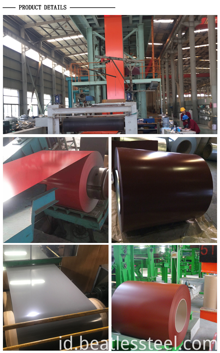 Hot Sale PPGI Steel Coil