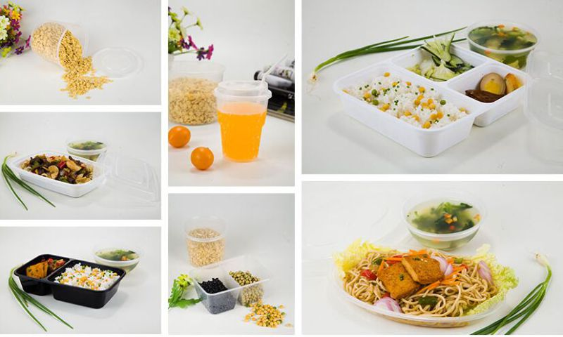 Disposable 2 Compartmnet Microwave Plastic Food Container for Food Take Away