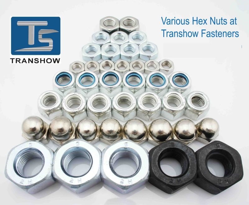 Color Zinc Plated Hex Nuts