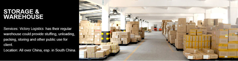 Professional Logistics Shipping/Shipping Service From China (Shipping Service)