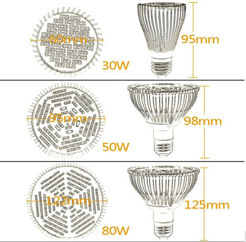 Full Spectrum 30W 50W 80W LED Grow Lights E27 Horticulture Garden Flowering Hydroponics Vegetables Plant Lamps