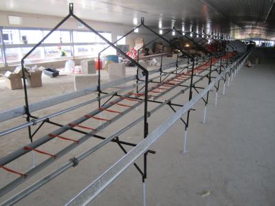 Laying Nest Equipments for Chicken Breeder