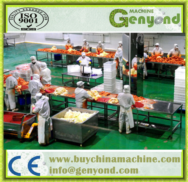 Full Automatic Pickle Manufacturing Machines