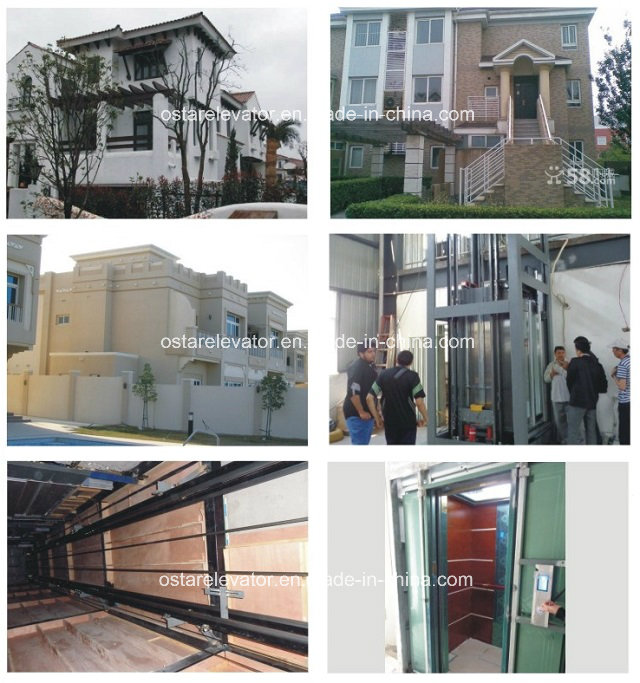 3 Persons Loading Villa Passenger Elevator, Home Lift for Wheelchair