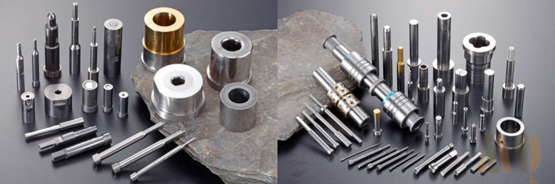 Standard Precision Carbide Punch Pins with Ticn Coating for Mold