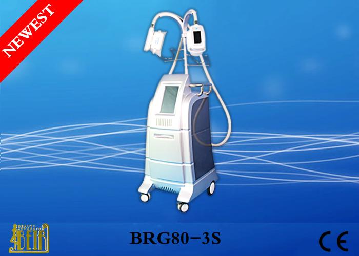 Latest Pain Free Cryolipolysis Fat Freeze Slimming Machine Pure Water Cool