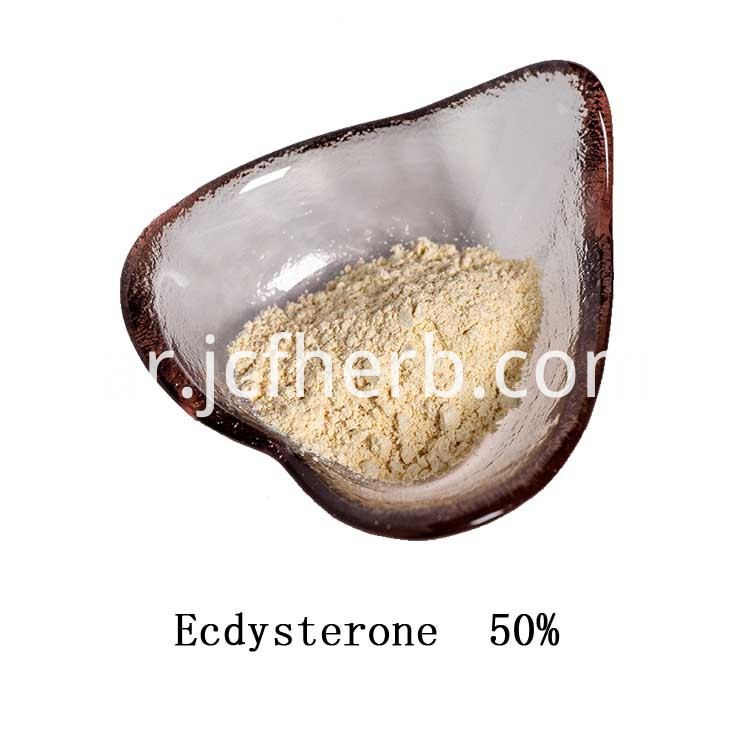Ecdysterone Powder