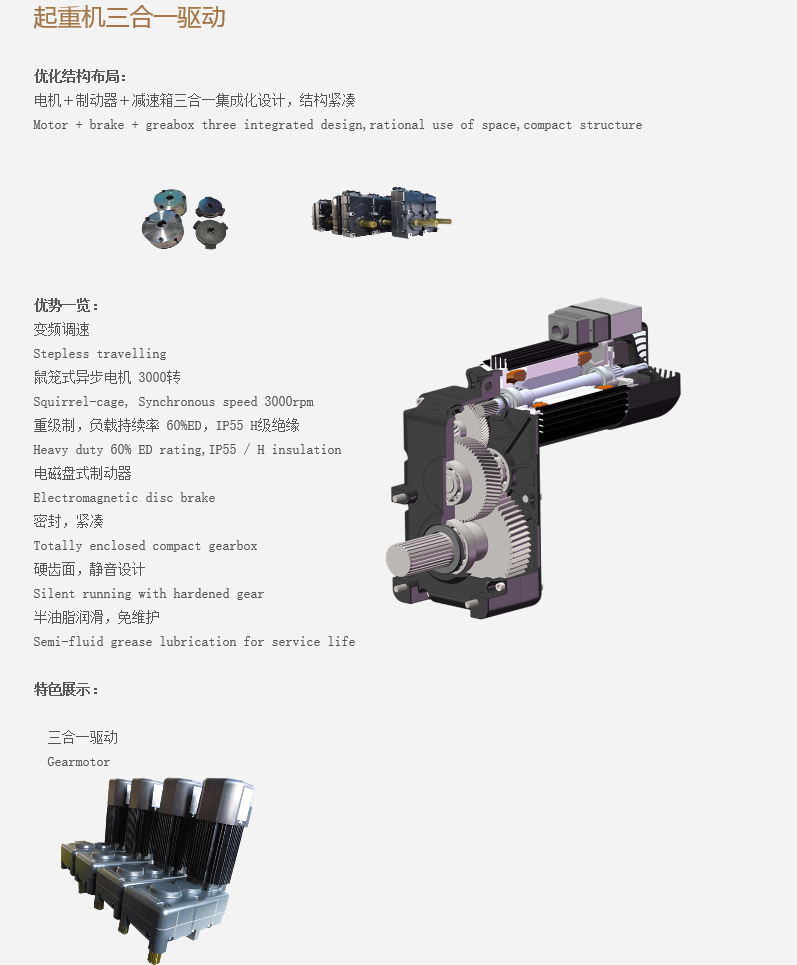 Travelling Motor for Crane Low Price