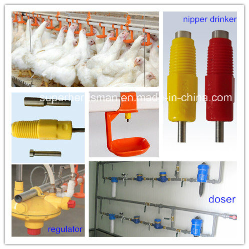 Poultry Equipments with Agent in Pakistan