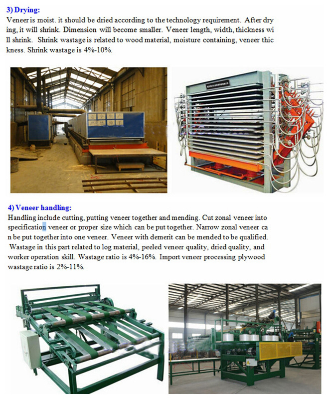 Film Faced Plywood Production Line