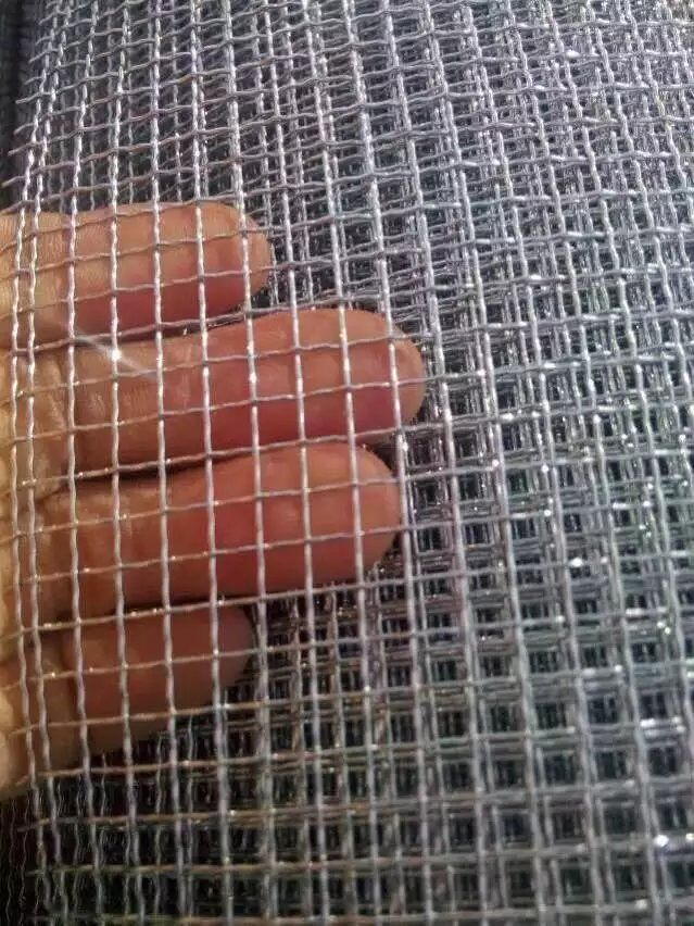China Anping Factory Galvanized Crimped Wire Mesh with Low Price