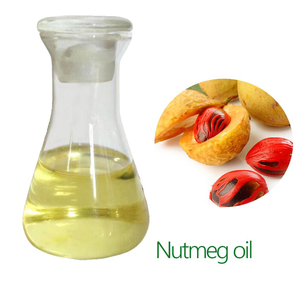 Therapeutic Aromatherapy Enang Nutmeg Oil Nutmeg Myristica Fragrans Pure Essential Oil Premium Therapeutic Grade Nutmeg Oil Bulk