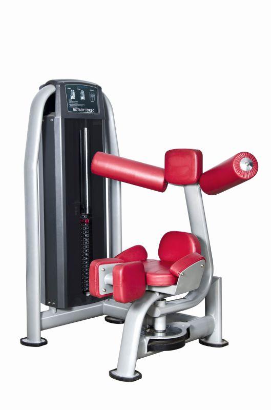 Fitness Equipment Body Building Strength Machine Rotary Torso (UM319)