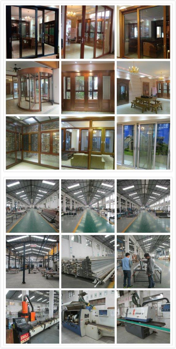 Guangdong Woodwin Hot Seller Double Tempered Glass Aluminium Sliding Door (YS-100A)