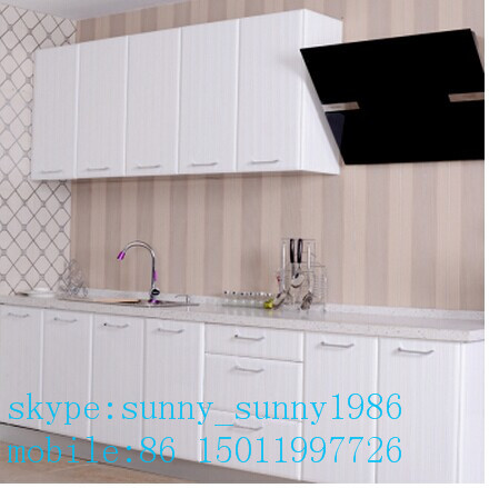Customized Lacqure Kitchen Cabient Shutters (customized sizes)