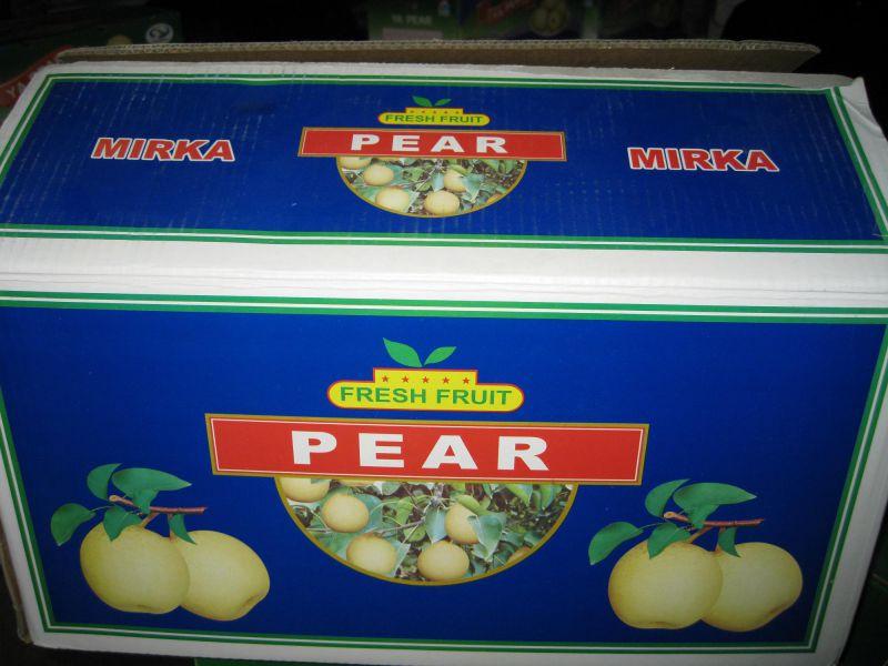 Fresh Ya Pear From Professional Supplier