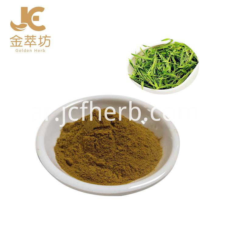 Lophatherum extract powder