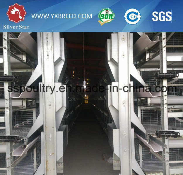 Q235 Steel Chicken Cage Poultry Equipment for Layer or Broiler