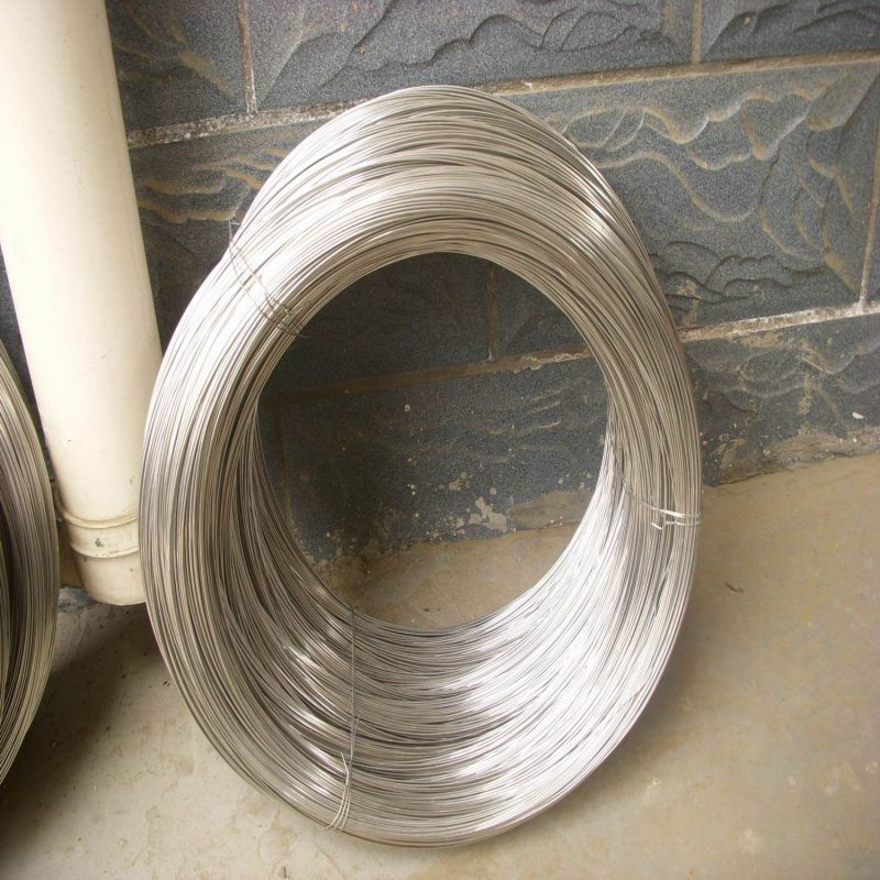 Ss 304 304L 316 316L Stainless Steel Wire