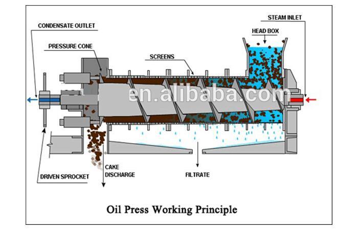 High Yield Oil Expeller Machine Gx Oil Press Yzyx140cjgx 12ton Per Day