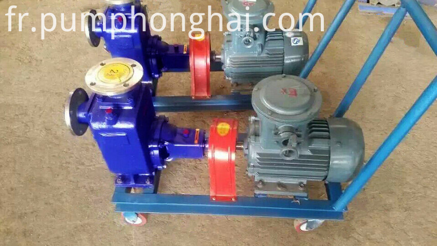 Self-priming Salt Water Pump