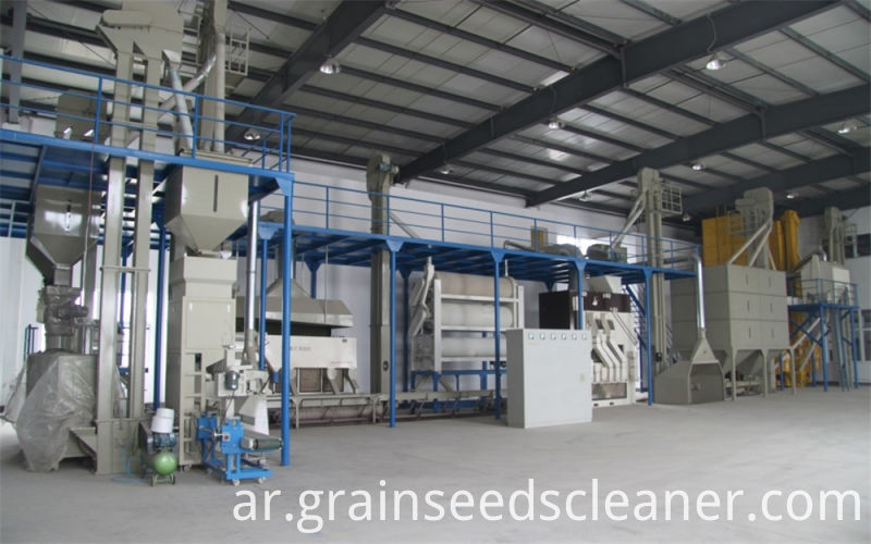 Chickpea processing plant