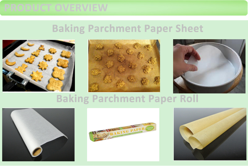FDA Heat Resistant Oven Safe Greaseproof Silicone Baking Paper Rolls and Sheets