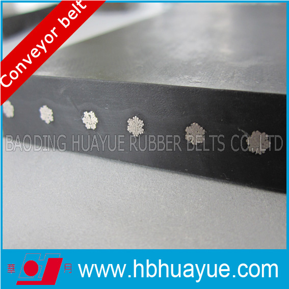 Flat Conveyor Belt System, St Steel Conveyor Belt Supplier Huayue 630-5400n/mm