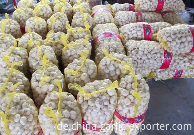 Specially customized small package garlic