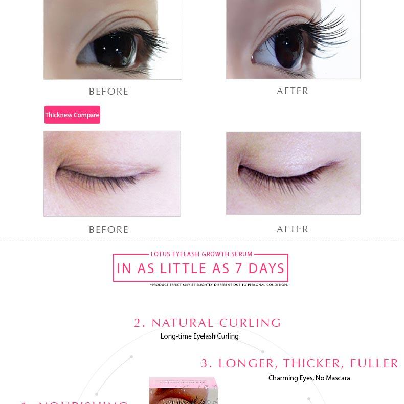 Eyelash Growth Product 2016 Lotus Lash Eyelash Enhancer Serum