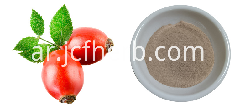 rose hip VC powder