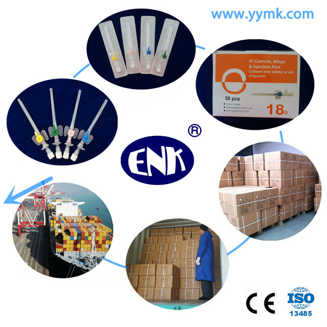 Blister Packed Medical Disposable IV Cannula/IV Catheter Wing Type 22g