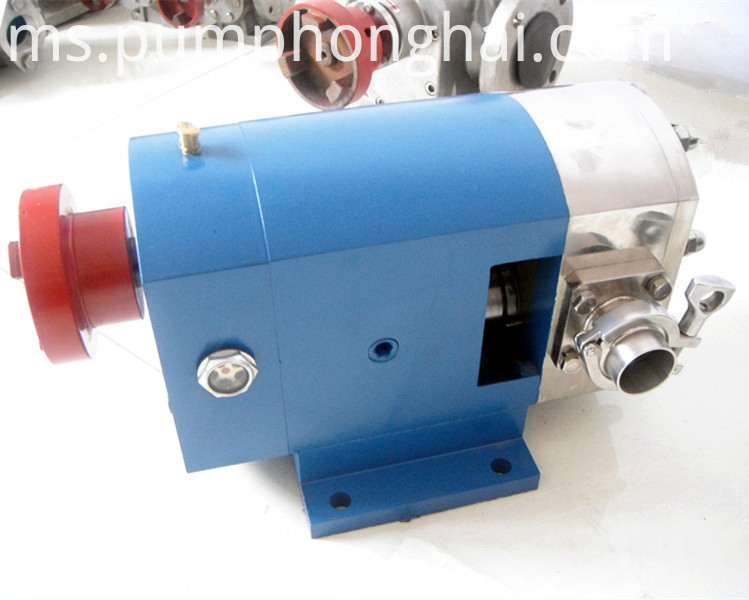 thick liquid transfer rotary lobe pump