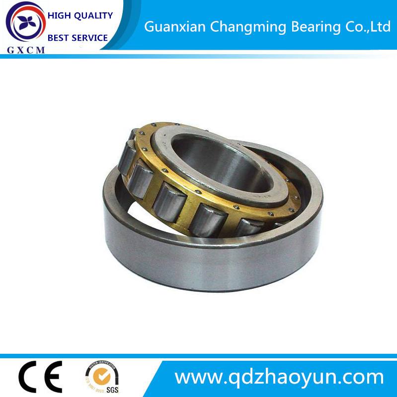 China Bearings Manufacturers Cylindrical Roller Bearing