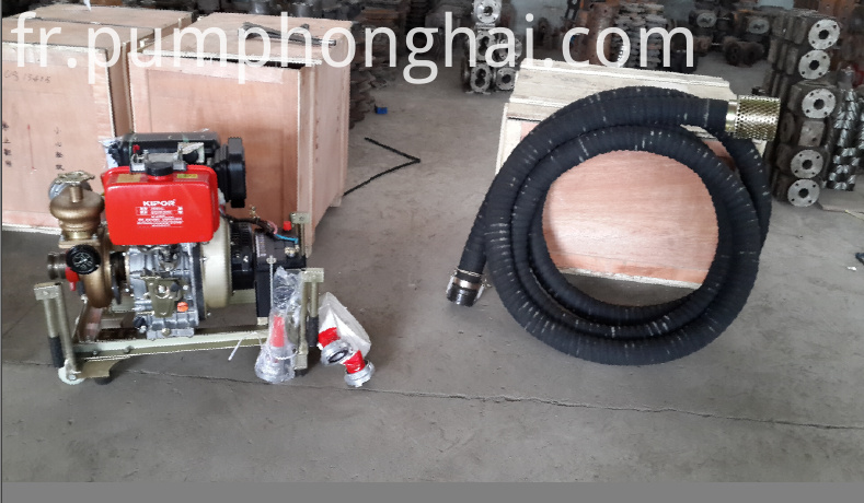 Diesel Emergency Fire Pumps