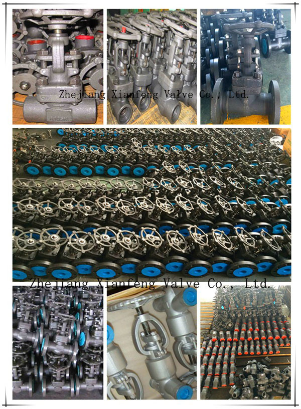 API Standard Forged Steel A105 Thread End NPT Globe Valve
