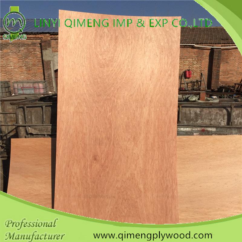 Professionally Supply 3'x6' 3'x7' 3'x8' Bintangor Door Skin Plywood