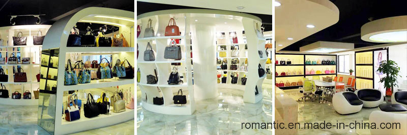 Guangzhou Wholesales Fashion Lady PU Handbags (NMDK-060701)