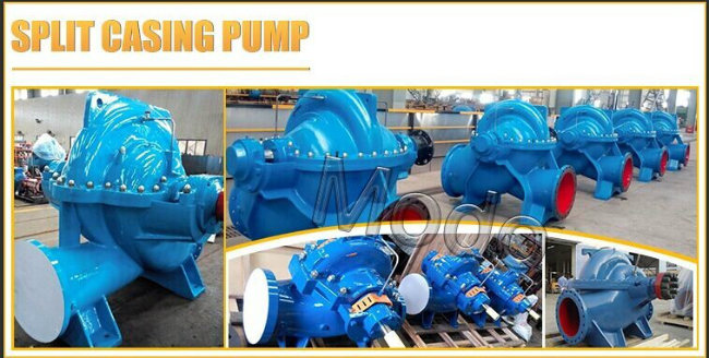 Circulator Big Flow Double Suction Water Pump