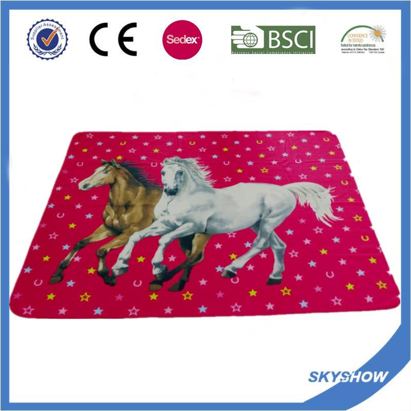 Full Color Printing 100% Polyester Polar Fleece Blanket (SSB0209)
